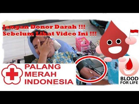 Donor Darah ? Tidak Seperti yang kamu bayangkan !!!
