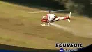 Raptor 50 Ecureuil Thunder Tiger