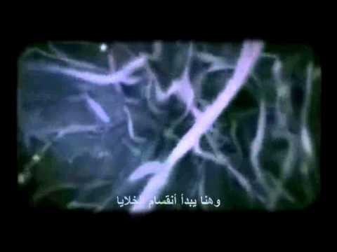من أين كانت البداية ؟؟ | قناة عدنان ابراهيم