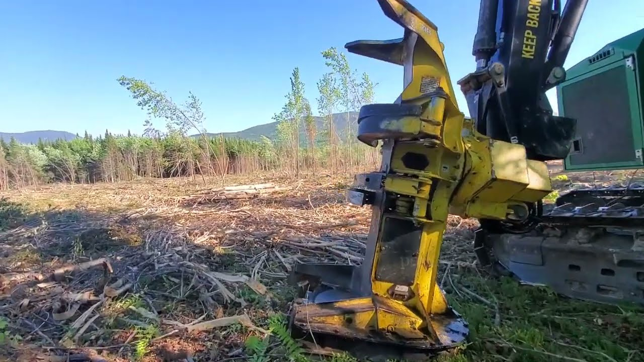 After a Slow 2020 Logging Is Coming Back Strong