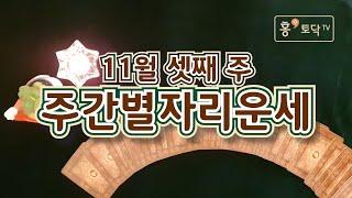 [홍테라타로/11월셋째주주간별자리운세]11월 16일~22일 11월 셋째주 주간별자리운세 타로