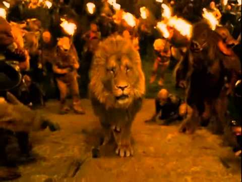 The Chronicles of Narnia  The Lion1