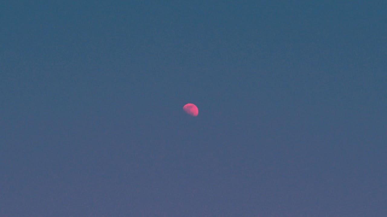 Tasha - But There's Still The Moon