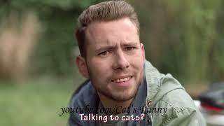 Реклама с котами  Лучшая подборка смешной рекламы с котами
