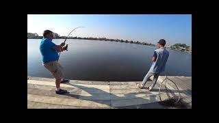Монстры сомы Самый большой сом в мире из книги рекордов Вот это рыбалка