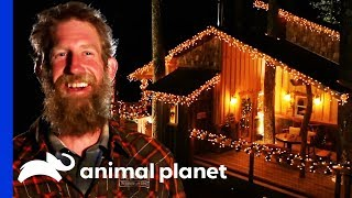 Get In The Christmas Spirit With This Ultimate Cozy Treehouse! | Treehouse Masters