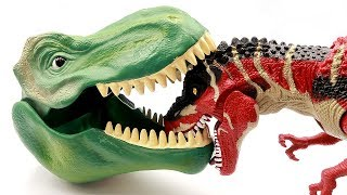 Giant T-Rex Dinosaur Toys!  Defeat the Evil Dino and Teach  you dinosaur Names! 공룡메카드