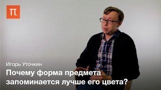 видео: Возможности и ограничения зрительнои памяти - Игорь Уточкин