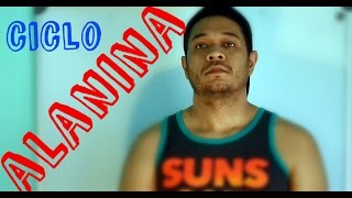 CICLO DE LA ALANINA (Glucosa-Alanina)    Mike Lab