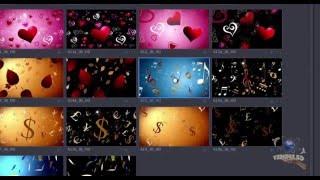 Видеоуроки Adobe Premiere Pro.   Jump Backs & Power Cuts. Обзор коллекций от Digital Juice.