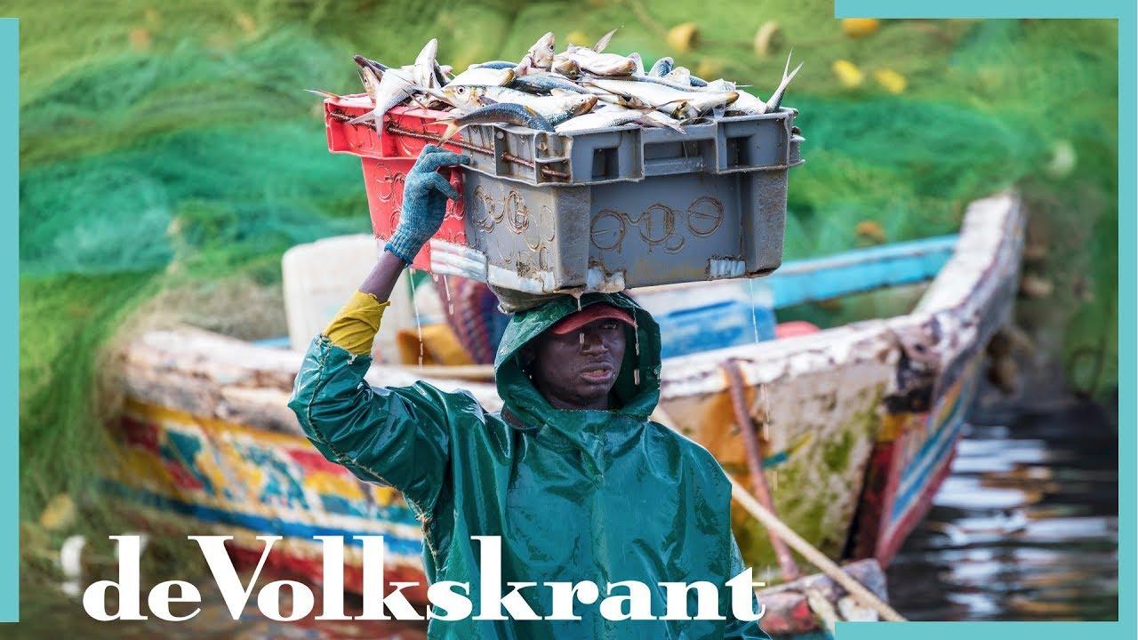 House Doctor Eettafels : Hoe de vis verdwijnt van de eettafels in west afrika de