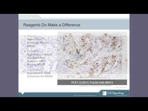 Download Immunohistochemistry IHC Tips and Techniques