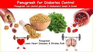 Fenugreek Diabetes Herb Lower BS, A1C & Cholesterol