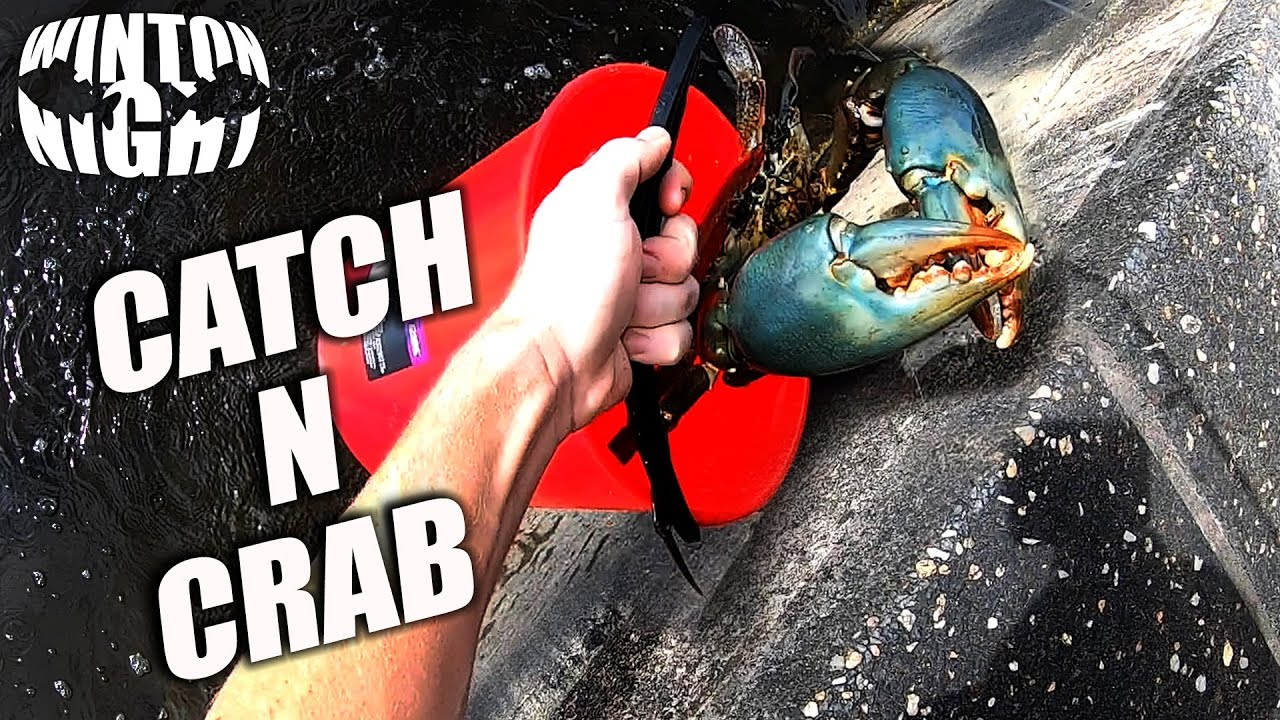 CATCHING MASSIVE CRAB only a metre from THE FOOTPATH