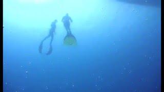 Freediving Bonaire 2009 com Karol Meyer Etapa I
