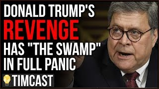 "Donald Trump Is WINNING His Fight With ""The Swamp"" And Putting DC Elites In Full On Panic"
