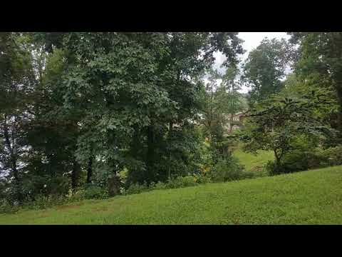 Real estate for sale in Bath Springs Tennessee - MLS# 173968