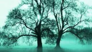 Burak Destan - Rüyalar Gercek Olsaydi 2009 Yeni Sarki