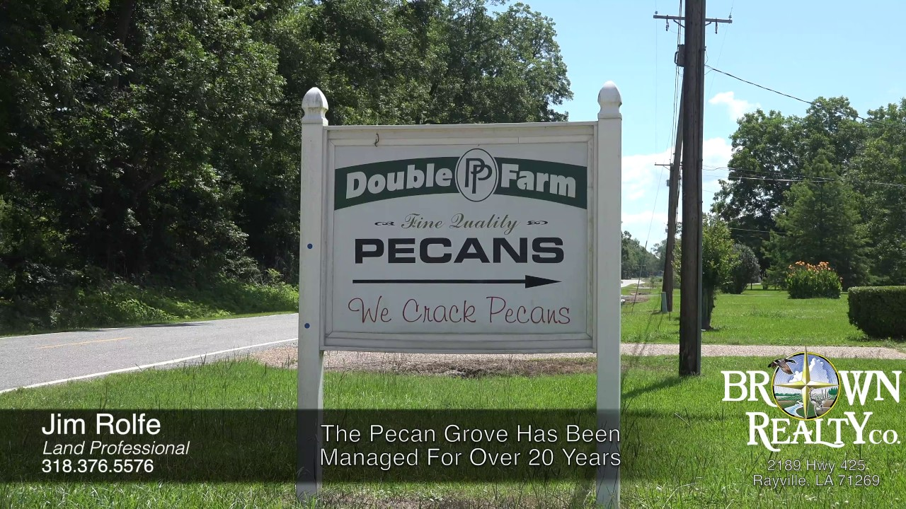 71 Acre Pecan Orchard With Home For Sale In Monroe La Youtube