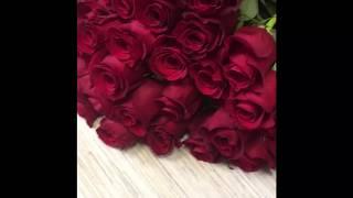видео 51 роза, купить с доставкой в СПб, цветы 51 роза
