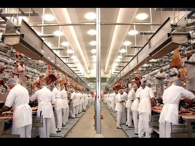 Dokument: Triky potravinárskeho priemyslu SK dab.
