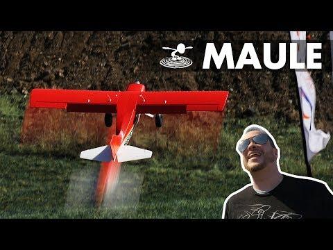 E-Flite Maule M-7   Up close and personal!