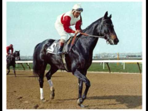 Famous Horse Races In Usa