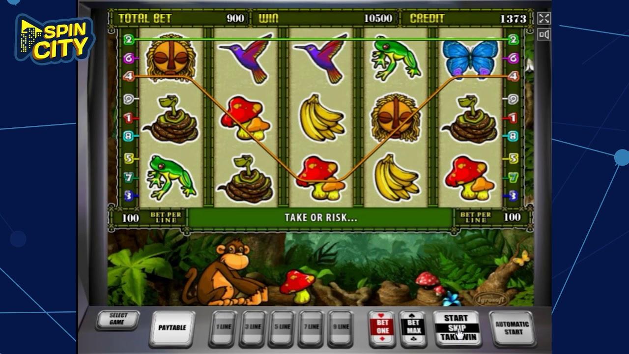 Что собой представляет игровой автомат Crazy Monkey 2?
