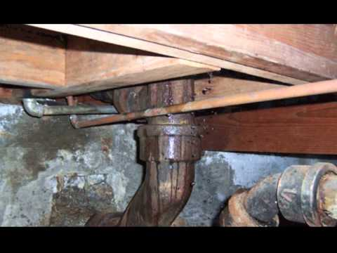 ways-to-prevent-toxic-mold