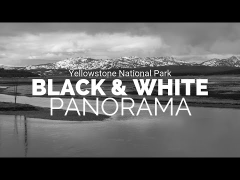 Black and White & Panoramic Photography In Yellowstone National Park | Spring of 2019