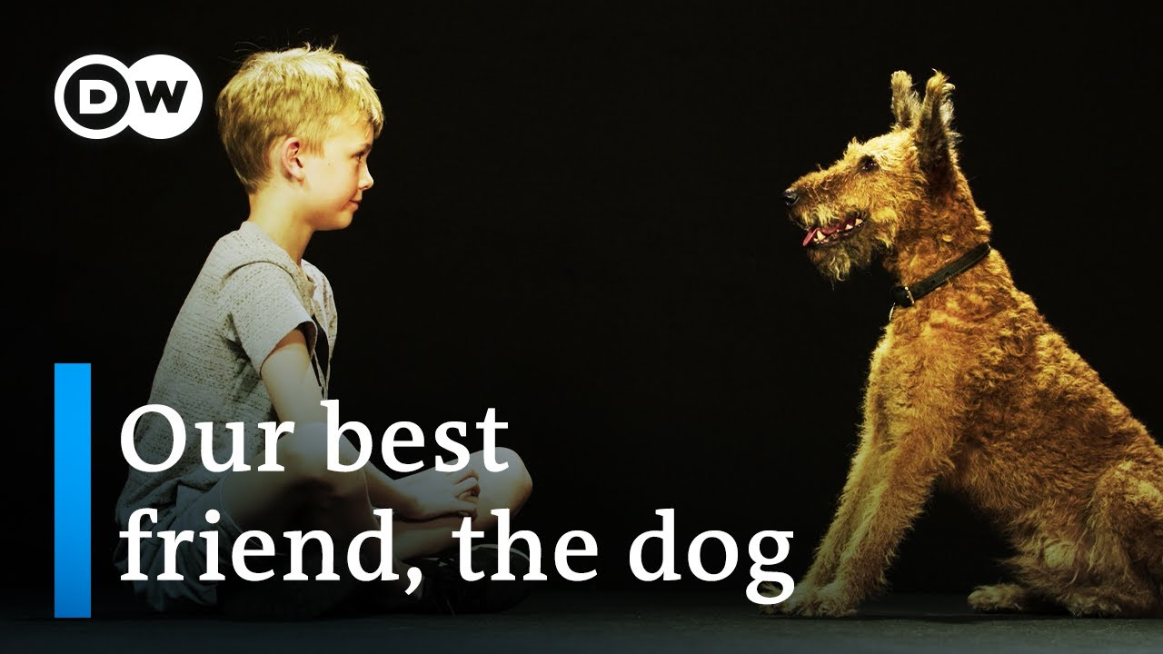 Download Dogs & us - The secrets of an unbreakable friendship | DW Documentary