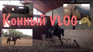 VLOG: Тренировка|Конный спорт! ПРЫГАЮ на Версале!