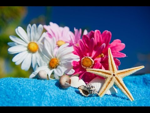 Spa Music, Massage Music, Relax, Meditation Music, Instrumental Music to Relax, ☯469