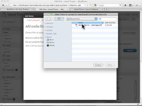 how-to-inserting-pdf-into-wordpress-post---wordpress-tutorilas
