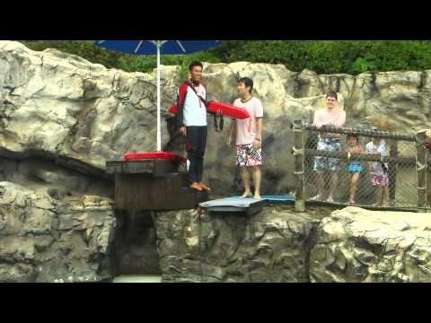 캐리비안베이 다이빙풀 - Diving pool in Caribbean Bay, Korea (3/4)