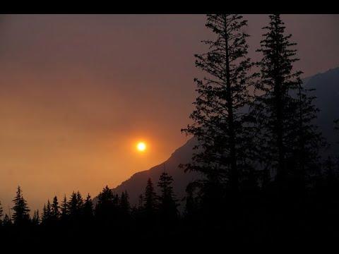 لليوم الرابع على التوالي   استمرار حرائق الغابات في اليابان  - نشر قبل 6 ساعة