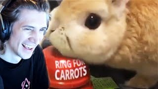 xQc Reacts to UNUSUAL MEMES COMPILATION V106 & Daily Dose of Internet! | xQcOW