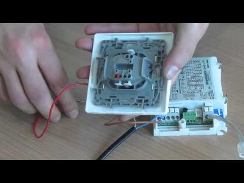 DALI driver wiring  tutorial  YouTube