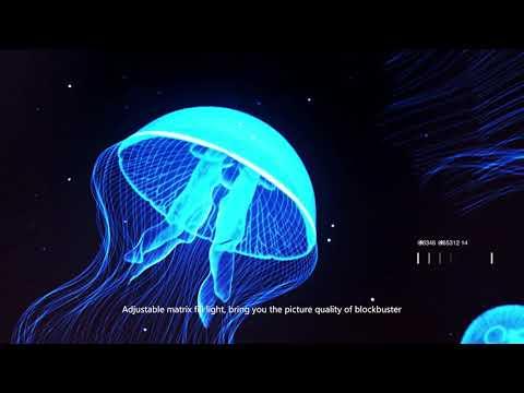 Nemo, Ultra High-Definition 4K Underwater Drone