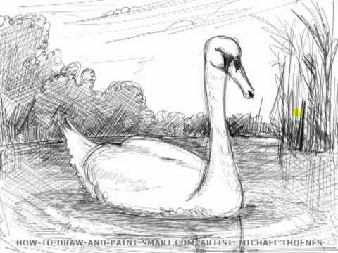 drawing lesson how to draw a swan mat youtube