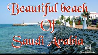 Beautiful beach of Saudi Arabia's fact