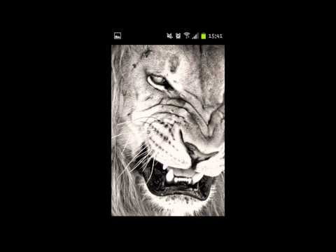 Showtek ft. We Are Loud & Sonny Wilson - Booyah (320kbps)