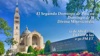 Domingo de la Divina Misericordia – April 11, 2021