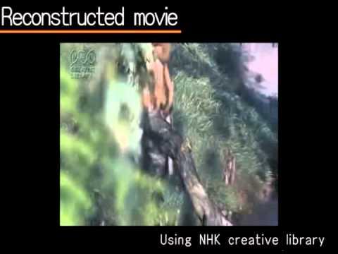 Error Concealment for Video Transmission