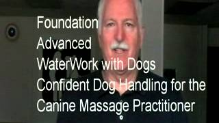 Live On-site Workshops - Dog Massage - Canine Massage - Hands On