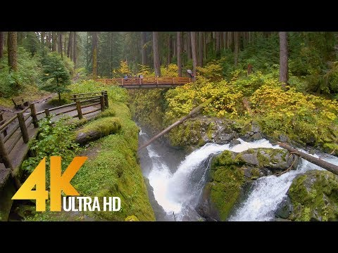 4K Virtual Hike Amazing Nature Scenery with Soothing Music Sol Duc Falls Nature Trail
