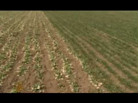 Chinese provinces battle worsening drought - 12 Feb 09