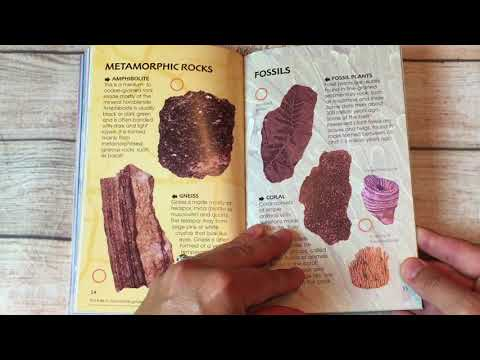 A Look Inside The Usborne Spotter's Guides Rocks and Minerals Book
