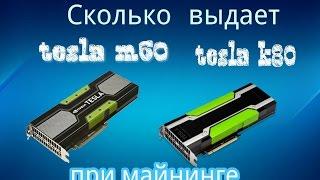 Сколько выдает Nvidia tesla m60 и k80 при майнинге Nicehash miner