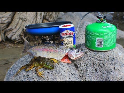 Catch N' Cook Bullfrogs & Trout At The Creek!